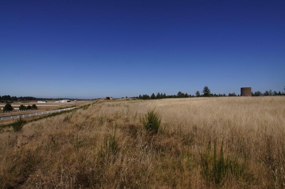 Barbara Maltman, Polo Ridge, Gearhart Oregon